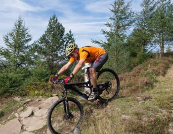 Mountain Bike Trail Downhill