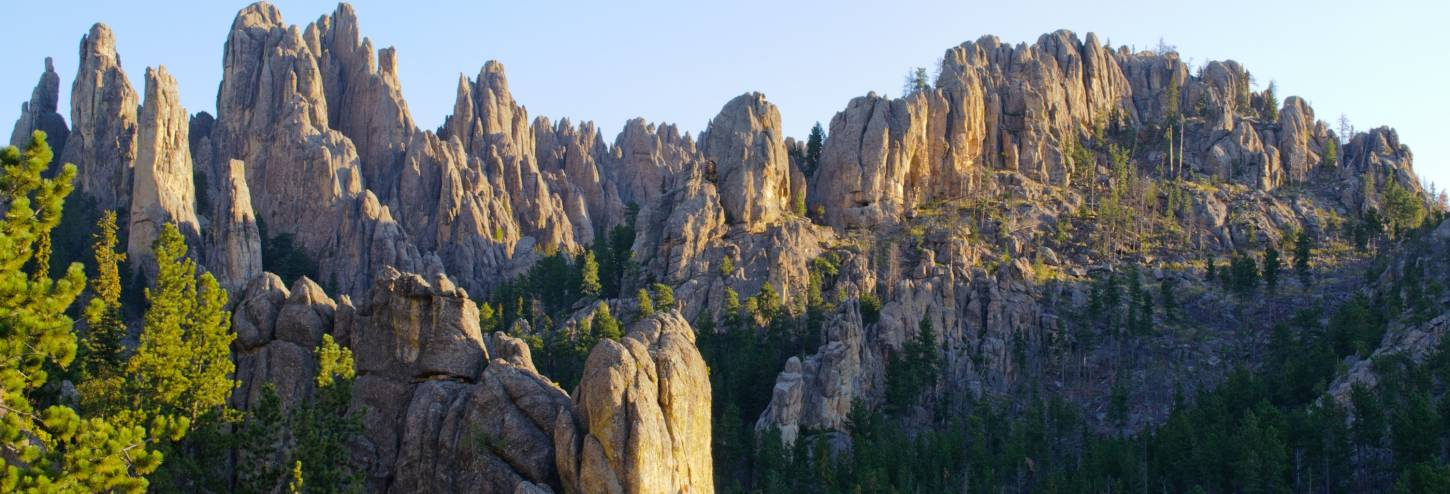Needles Highway Cathedral Spires