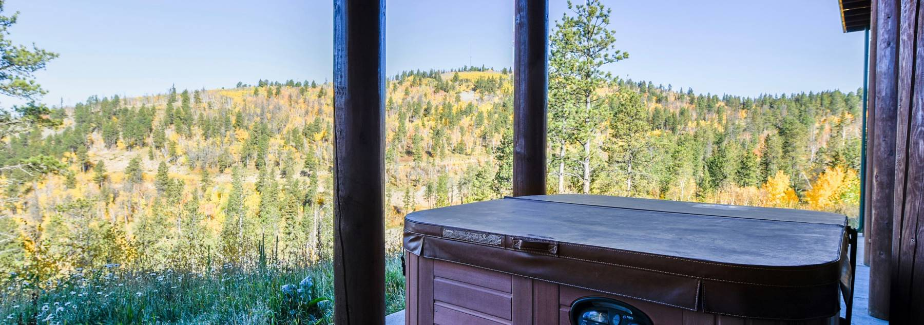 Hot Tub, fall, view, pine trees